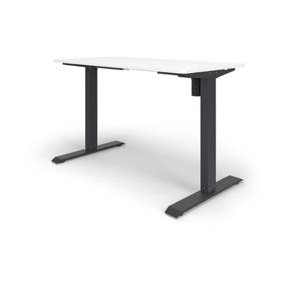 """Height Adjustable Desk with 24"""" x 48"""" Worksurface"""
