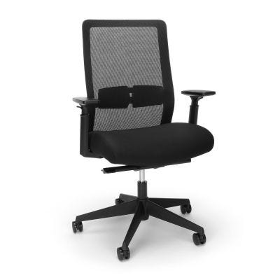 Biometryx Ergonomic Office Chair, Mesh Back